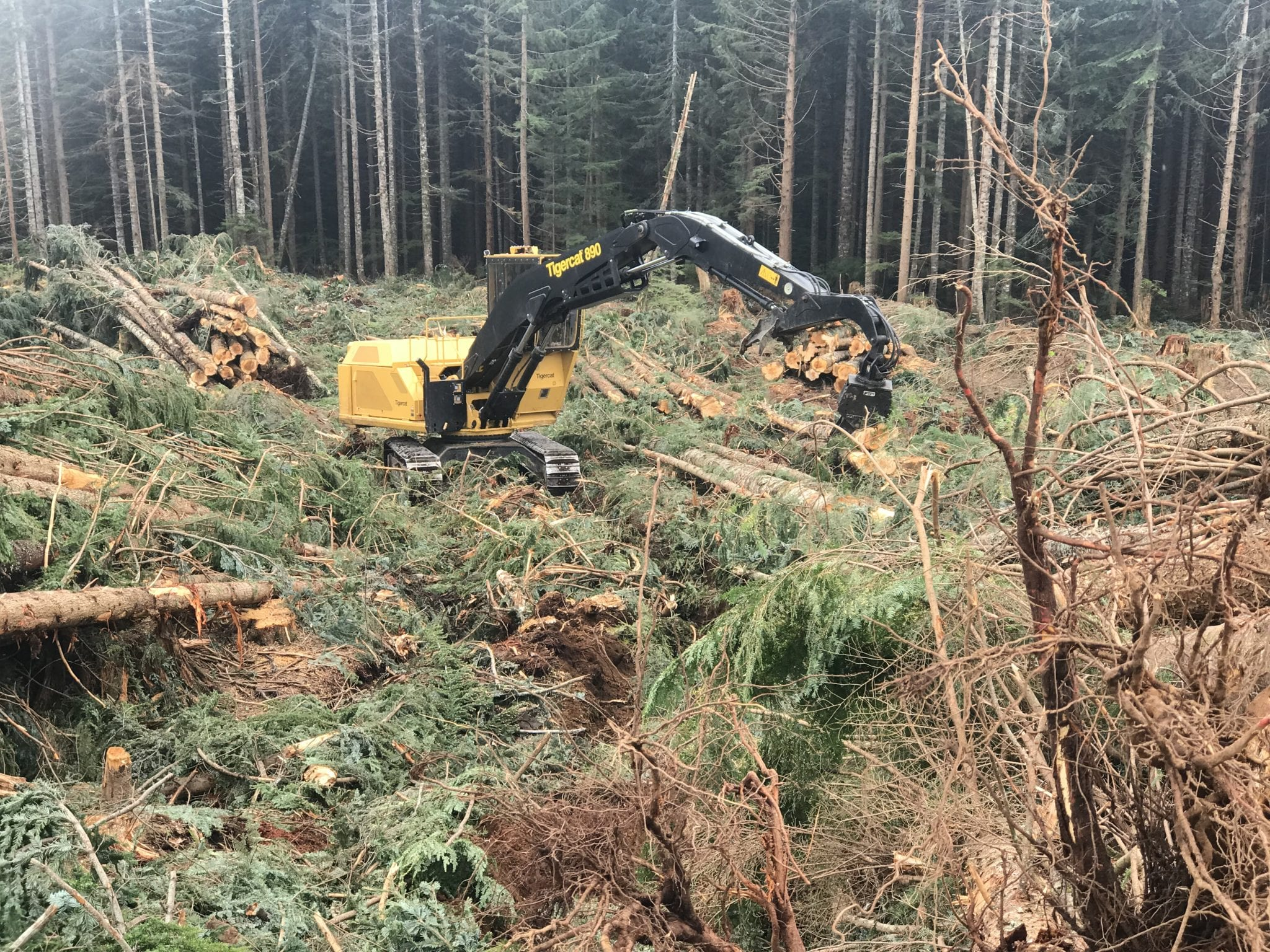 Forestry machinery at work on site