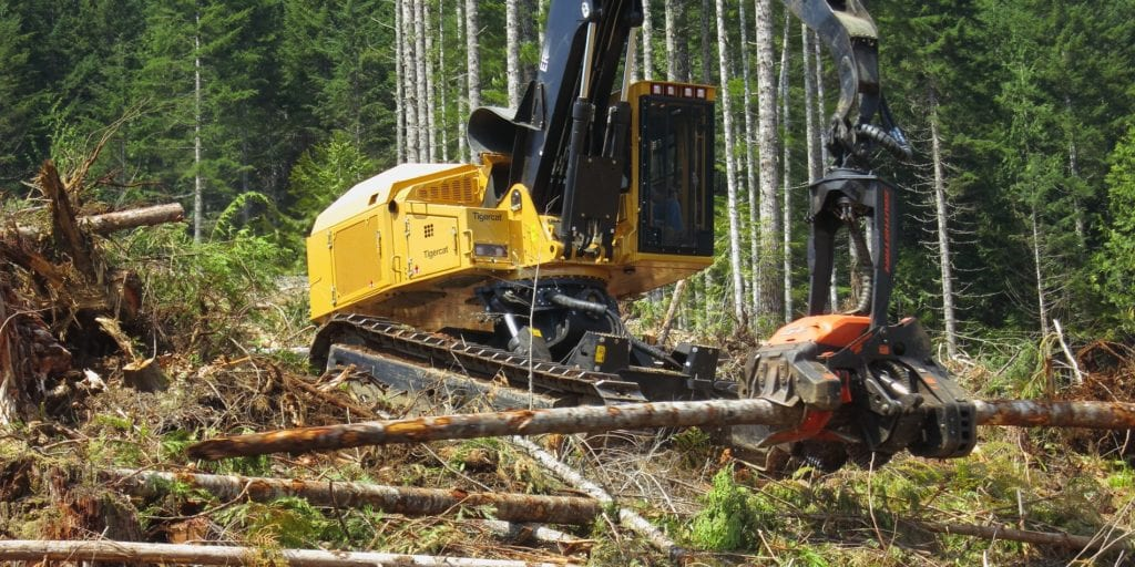 Used forestry equipment - Triad Machinery